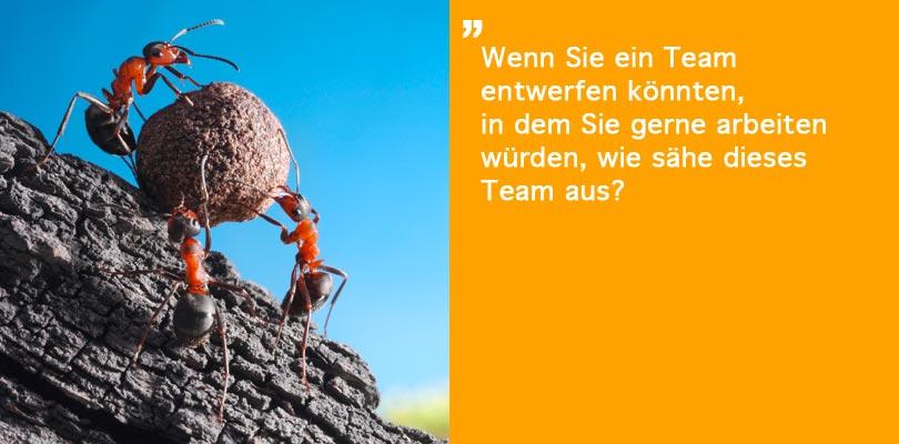 syntom organisationsberatung personalentwicklung teamentwicklung